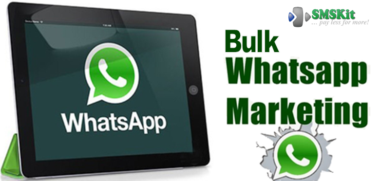 Bulk WhatsApp Marketing Solution - SEnd bulk whatsapp messages